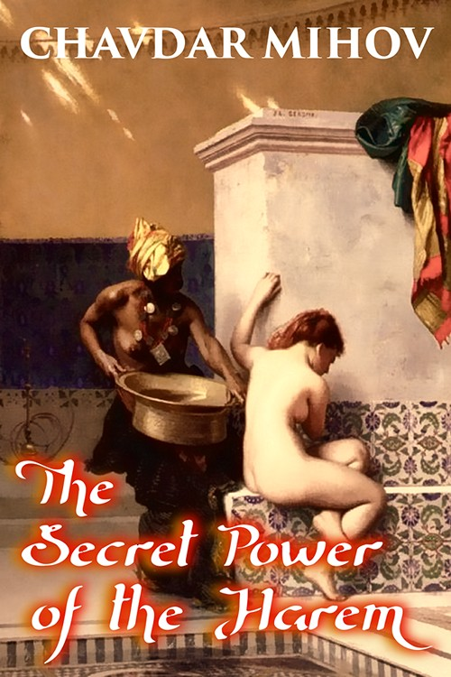 The Secret Power of the Harem, released by Tenth Street Press, an independent Australian publisher, 2014